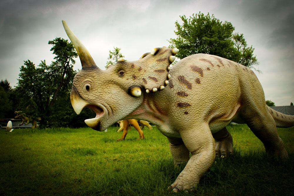 Dinosaurier Ausstellung